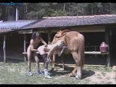 Dog porn free hard Young bad girl - ZooJizz - Free Porn Tube Videos